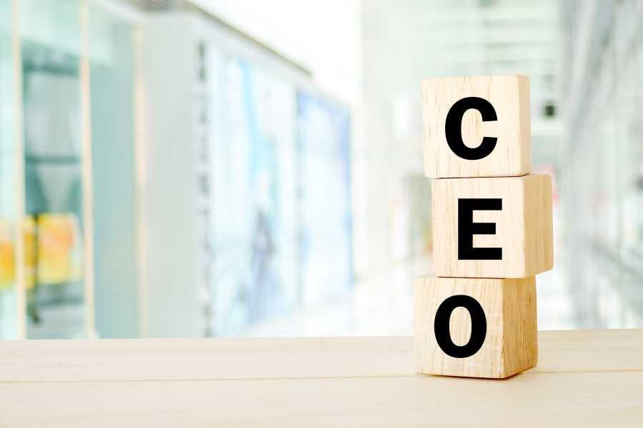 CEO toimitusjohtaja